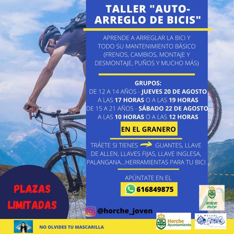 Taller Auto-Arreglo de Bicis