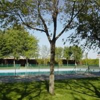 25.negro.piscina municipal.3.jpg